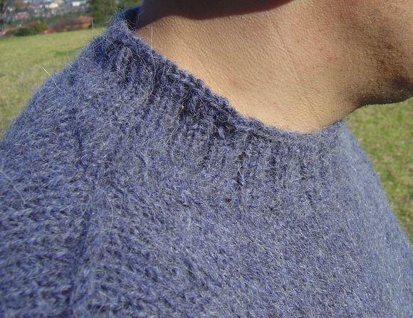 New collar line 2