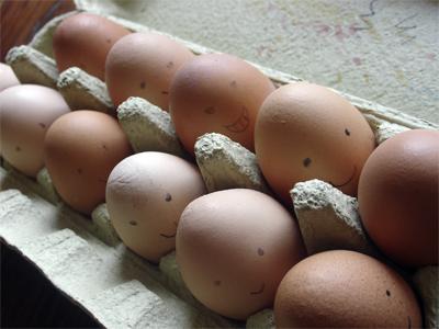 Eggfaces